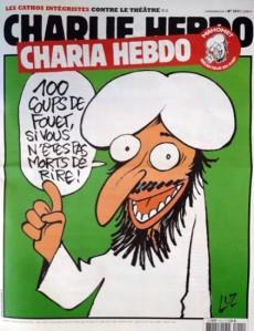 """Lo stereotipo orientalista e razzista del barbaro musulmano, privo di senso dell'umorismo viene reso ai massimi termini in quella vignetta che mostra il profeta Muhammad (la pace sia con lui) mentre dice """"100 frustate se non morite dalle risate""""."""